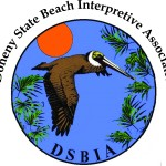 New DSBIA Logo